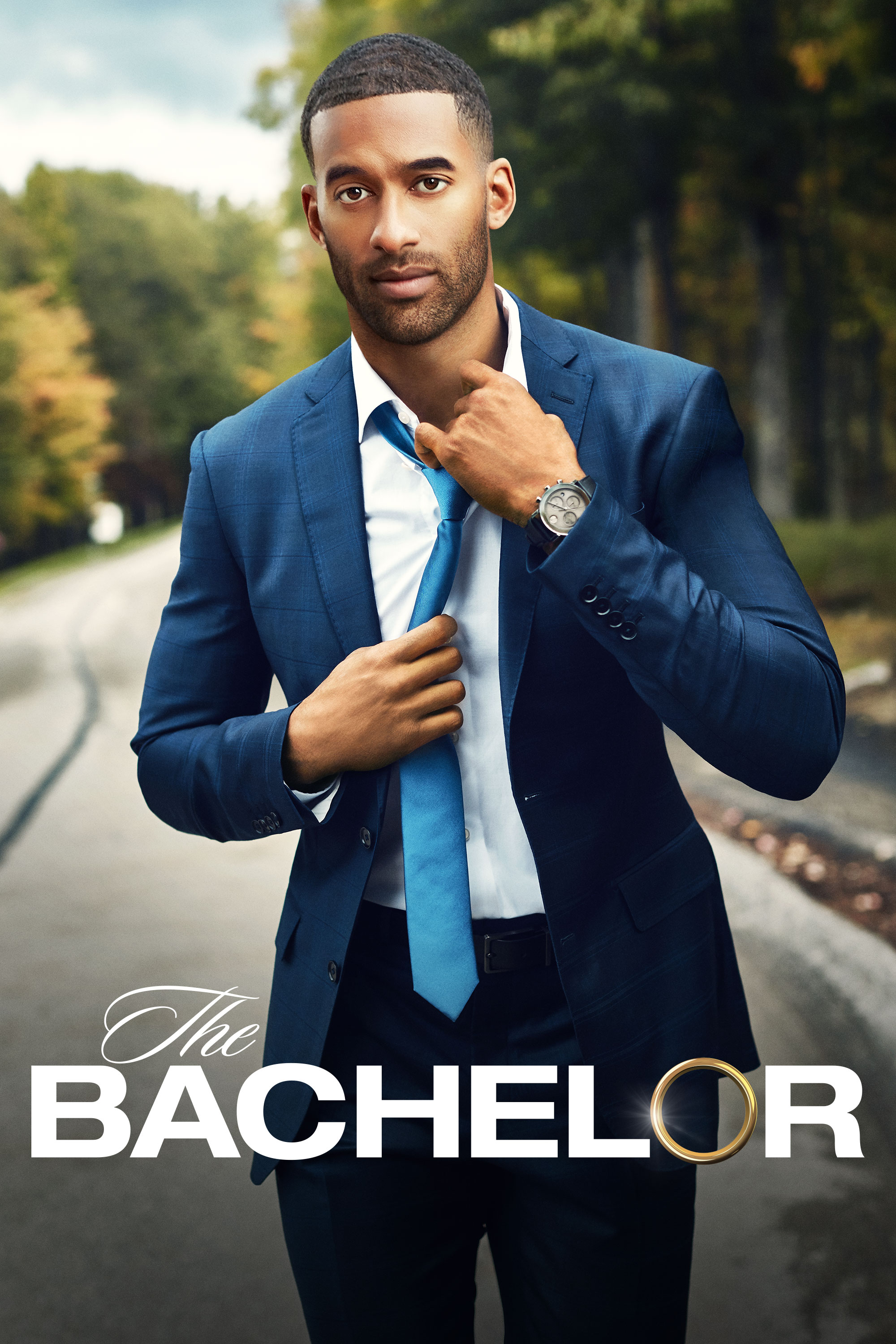 "cover design for ""The Bachelor"""